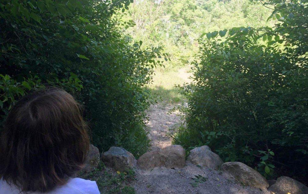 Lillie Park Playground - Trail Overlook