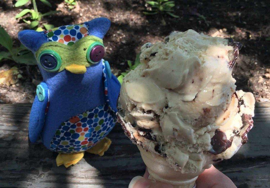Ann Arbor Ice Cream Shops - Washtenaw Dairy