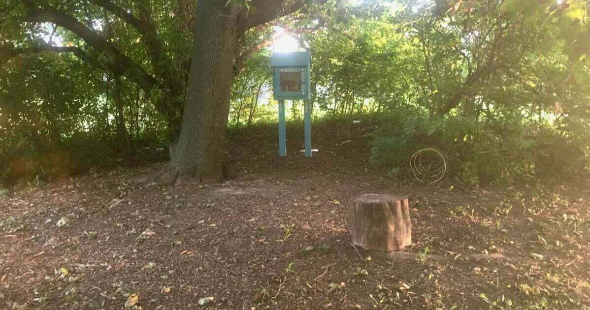 Bromley Park Little Free Library and Log Stool