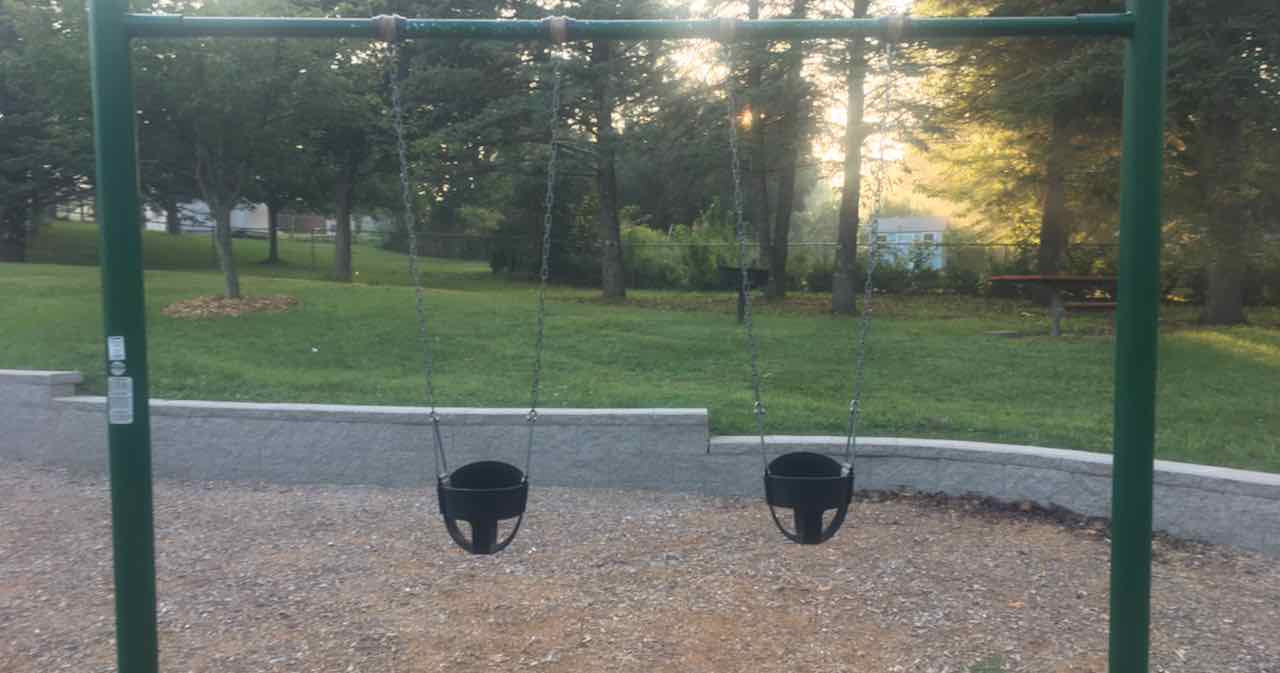 Swings picture