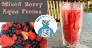 Mixed Berry Aqua Fresca