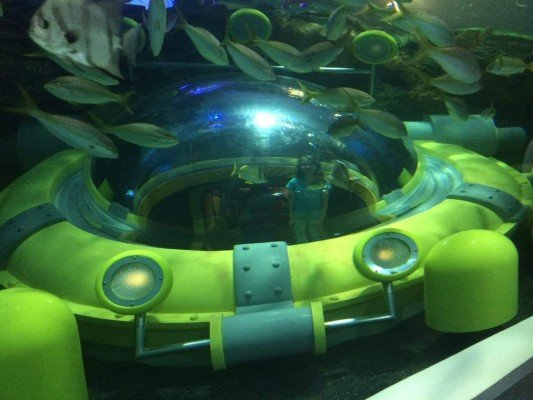 Toronto Trip - Ripley's Aquarium of Canada - Submersible