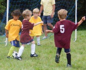 Ann Arbor Rec & Ed Spring Sports - Youth Soccer