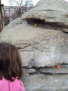 Toledo Zoo Easter Bunny Breakfast Hidden Eggs