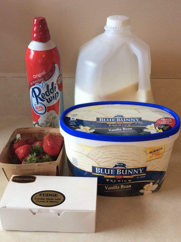 Strawberry Fudge Mini-Milkshake Ingredients
