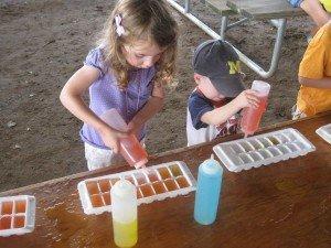 Saline Fair Preschool Day - AAHOM Activities
