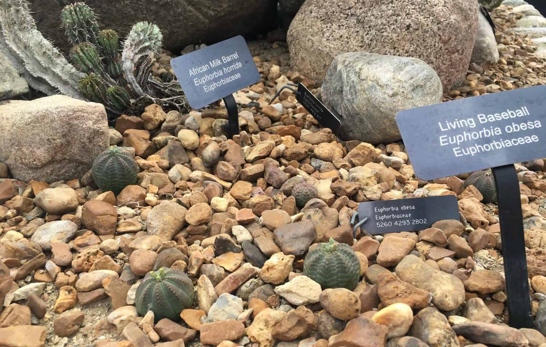 Matthaei Botanical Gardens - Wednesday Activity Review | Ann Arbor ...