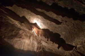 Penn's Cave Boat Tour - This formation is called Bacon