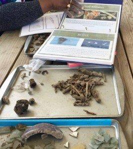 Archaeological Dig - Identification - Colonial Williamsburg - Virginia Road Trip
