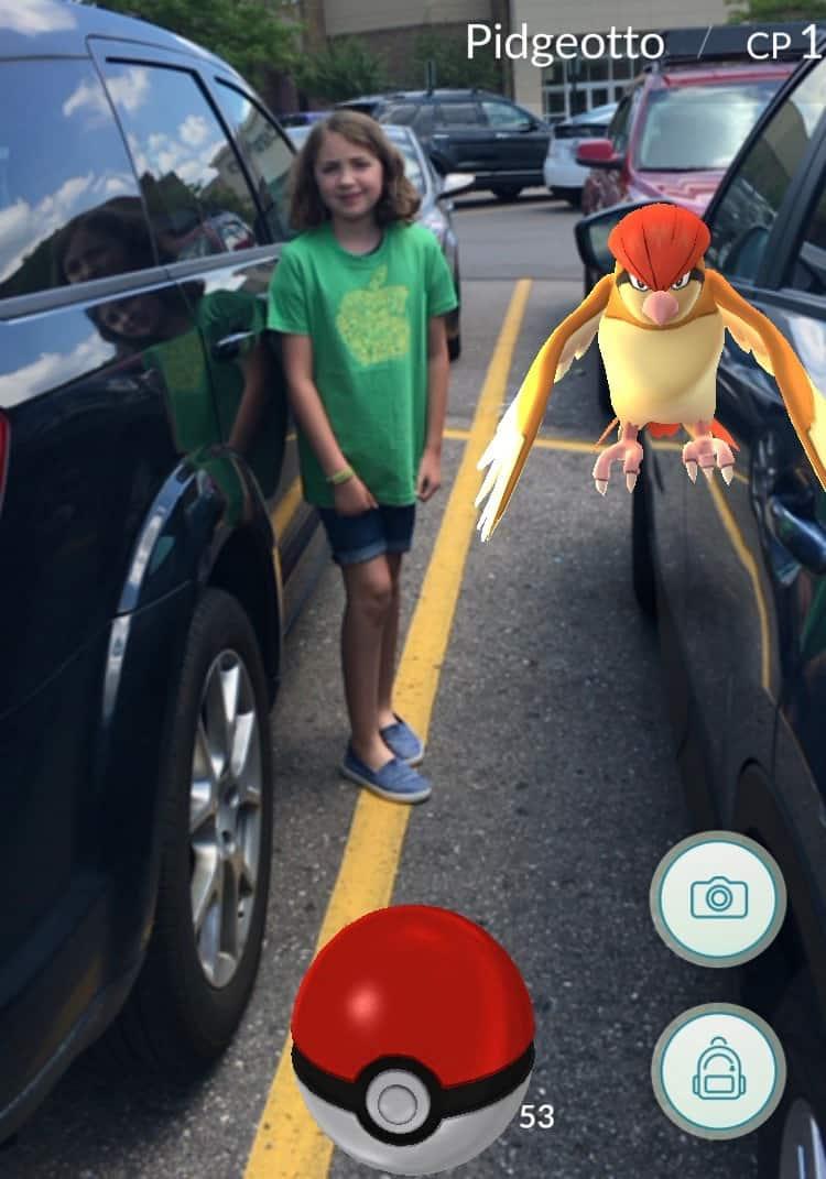 Ann Arbor Pokemon Go - Pidgeotto at Briarwood Mall