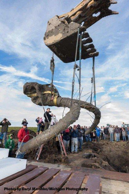 UMMNH - Mammoth Site Dig