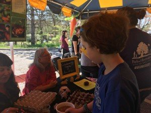 Ann Arbor Earth Day Festival - Making a Seed Bomb
