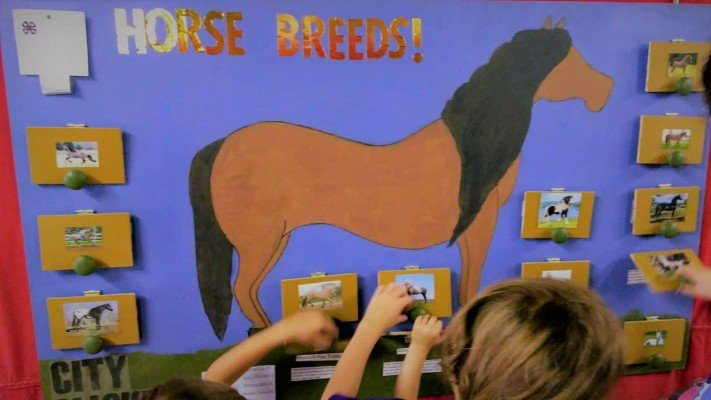 4-H County Fair - Horse Poster