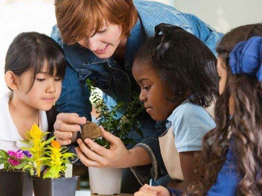English Gardens - Free Garden Club for Teachers