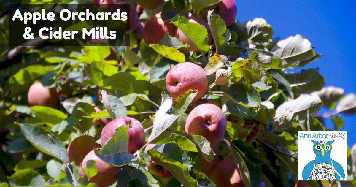 Ann Arbor Outdoor Activities - Ann Arbor Orchards & Cider Mills