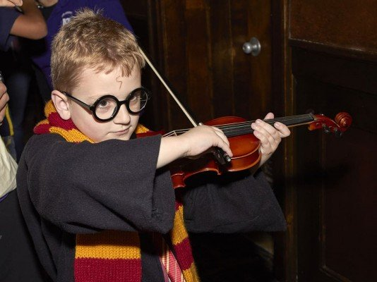 Magic of Harry Potter Concert - Instrument Petting Zoo