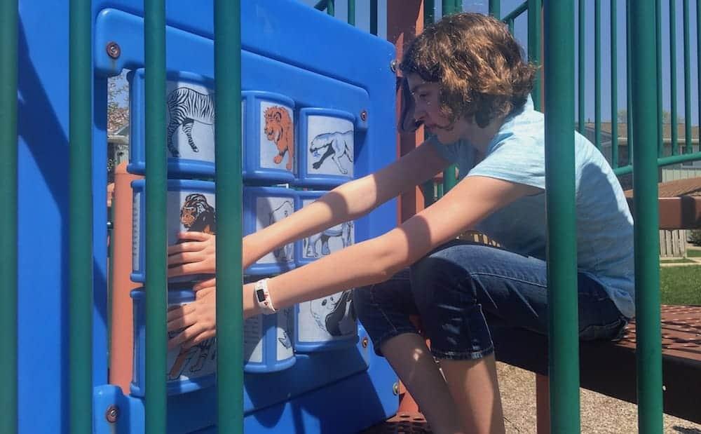 Ann Arbor Esch Park Animal Fact Spinner