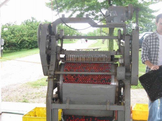 Ann Arbor Cherry Picking - Spicer Orchards Pitting Machine
