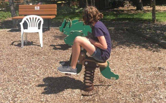 Ann Arbor Winewood Thaler Playground Profile - Dinosaur Bouncer