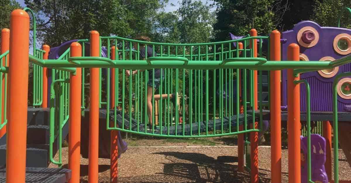 Ann Arbor Winewood Thaler Playground Profile - Flexible Bridge