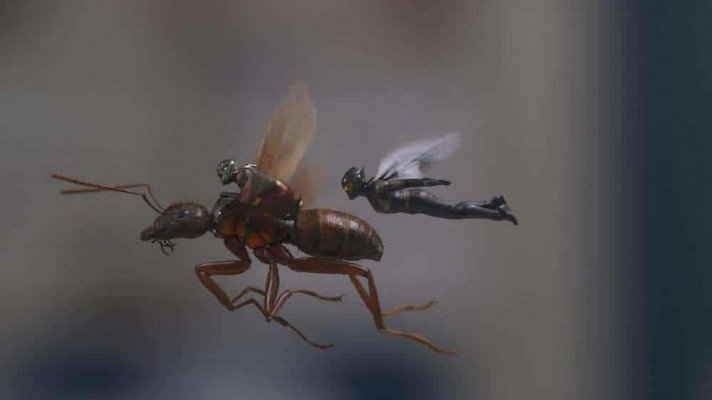 Ant-Man and The Wasp - Ant-Man & the Wasp flying