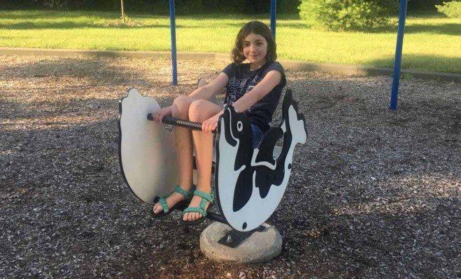 Ann Arbor Brookside Park - Dolphin Bouncer