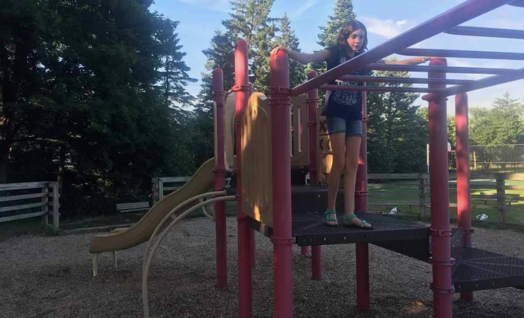 Ann Arbor's Clinton Park - Monkey Bars
