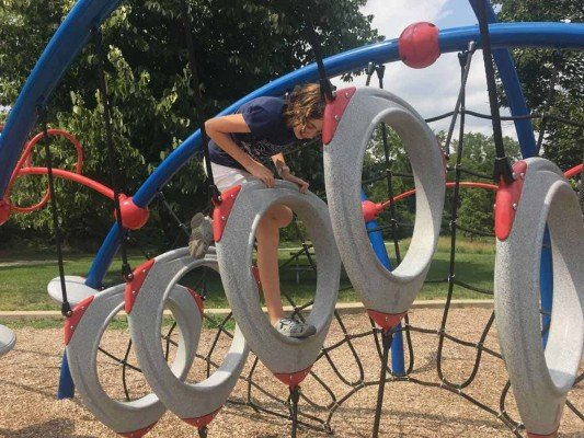 Ann Arbor's Mary Beth Doyle Park Playground Profile - Ring Climber