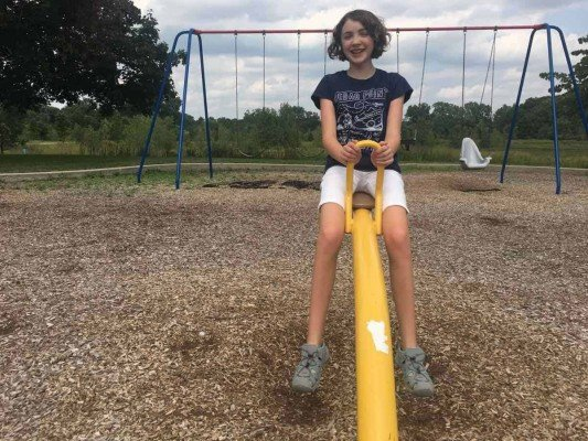 Ann Arbor's Mary Beth Doyle Park Playground Profile - See-Saw