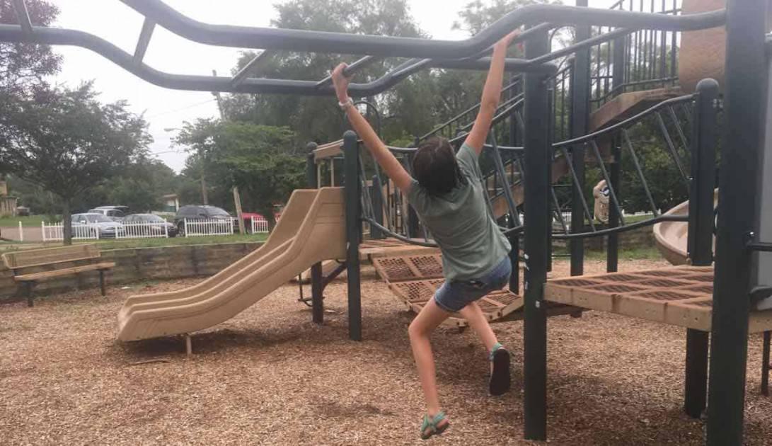 Ann Arbor Rose Park - Monkey Bars