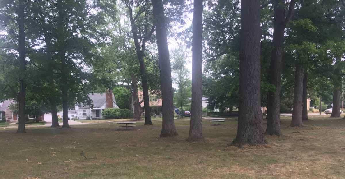 Ypsilanti's Recreation Park - Shaded picnic area