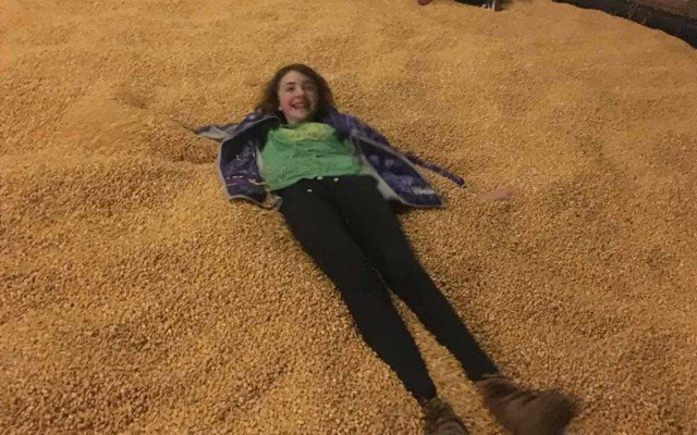 Blast Corn Maze - Corn Pit