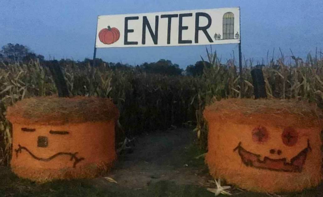 Blast Corn Maze - Maze Entrance