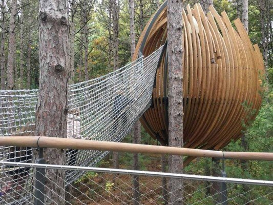 Canopy Walk - Rope Bridge to Pod - Whiting Forest - Dow Gardens