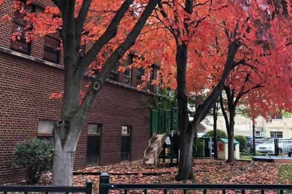 Ann Arbor Nursery - Exterior