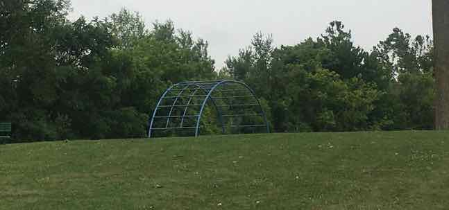 Saline's Brecon Park - Jungle Gym
