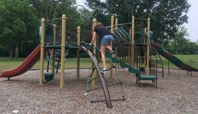 Saline's Brecon Park - Twisted Ladder