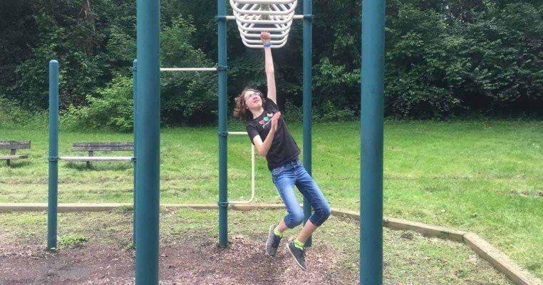 Tuebingen Park - Ann Arbor Playground Profile - Monkey Bars