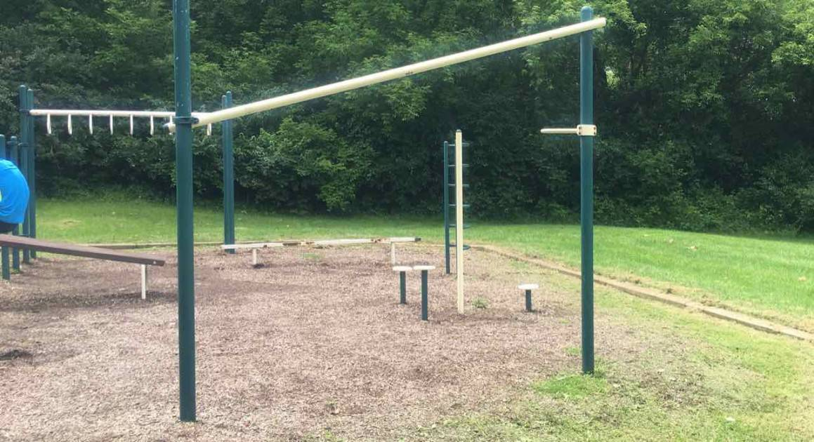 Tuebingen Park - Ann Arbor Playground Profile