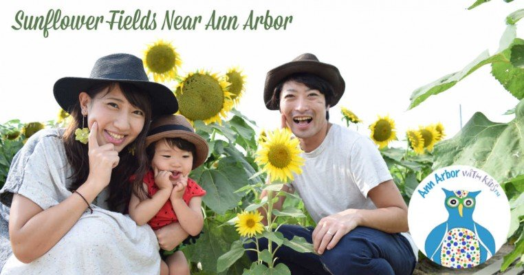 Ann Arbor Sunflower Fields & Festivals
