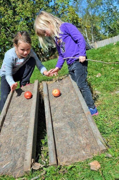 Apple Races - Green Apple Garden Applefest