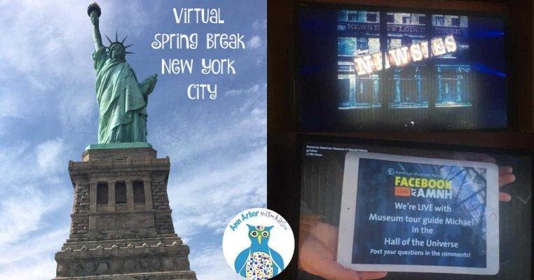 Virtual New York City