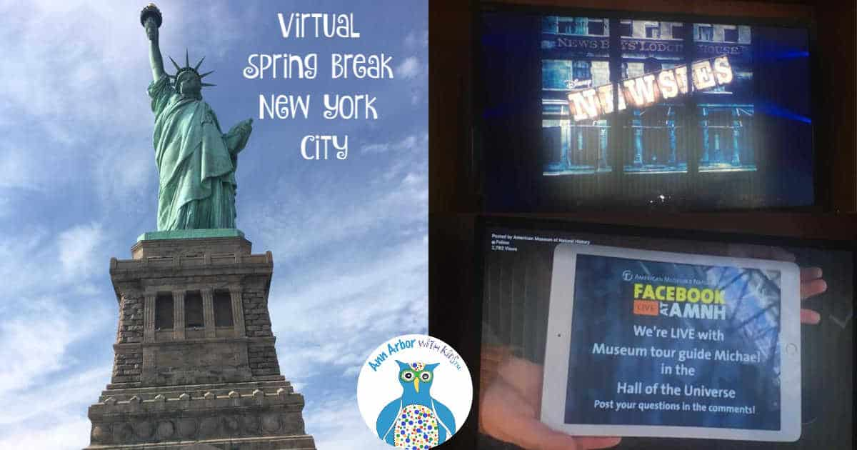 Virtual New York City