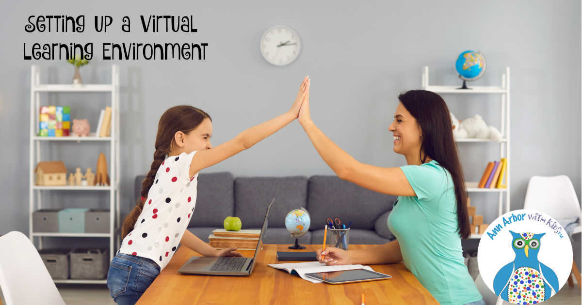 How to Setup the Best Virtual Learning Environment